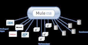 Mule Enterprise - EmDev