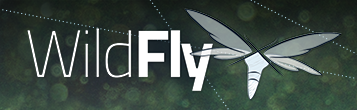 WildFly 13